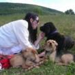 Photo #1: DAWN'S DOG RETREAT-BOARDING & DAYCARE