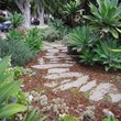 25 Years Experience Landscape Design /Maintenance