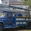 Interstate Tree Inc. STORM DAMAGE Clean-up and TREES CUT CHEAP and more