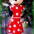 Mickey & Minnie & more Real looking Mascot Costumes we come to you!!