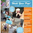 BEST DOG WALKER IN LONG BEACH!