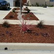 Modern Concepts. WE SPECIALIZE IN DROUGHT TOLERANT LANDSCAPES AND DESIGNS