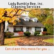 LADY BUMBLE BEE, Inc. CLEANING SERVICES