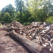 Seasoned Firewood. $125 Mixed Hardwoods.. Free Delivery. Lansdale