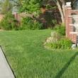 Alfredo's Lawn Care