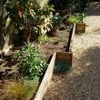 Professional yard cleanups, guaranteed pricing! San Francisco Green Urban Farming and Gardening