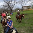 Horseback Riding Lessons $20/hr for Children and Adults