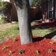 REFRESH YUOR LANDSCAPE, got leaves?
