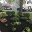 9 BROTHER'S LANDSCAPING. FALL CLEAN UP! AFFORDABLE PRICES!