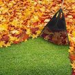 Lewis Landscaping & Design. Leaf Fall Clean Up