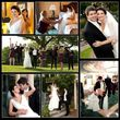 Wedding photographer $750