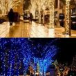 Holiday Lighting for all/ Christmas Lights done right