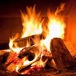 FIRE WOOD 175$ PER CORD