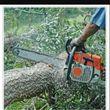 Photo #1: Tree service & land cleaning stump grinder