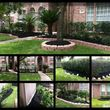Photo #8: Tapia's lawn care - mulch installation