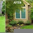 Photo #3: HARRIS TREE TRIMMING/TREE REMOVAL/ALL YARD SERVICES...