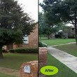 Photo #2: HARRIS TREE TRIMMING/TREE REMOVAL/ALL YARD SERVICES...