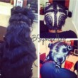 SALON GRADE SEW IN'S - IN THE COMFORT OF YOUR OWN HOME!