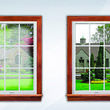 Window repair / replace (Rv glass repair)
