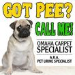 $69 CARPET OR UPHOLSTERY CLEANING WINTER SPECIAL