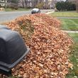 Still offering fall cleanup and other landscape services
