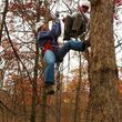 Photo #2: BRANCH BUSTERS. TREE REMOVAL/TREES TRIMMED. 25 YEARS EXP!