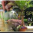 25% OFF Landscape Design Services & Installation
