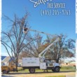 Photo #9: SALAS TREE SERVICE LLC. LICENSED/INSURED!