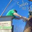 SALAS TREE SERVICE LLC. LICENSED/INSURED!