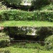 Photo #5: Pantoja Lawn Care