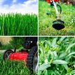 Photo #3: Alpha Gardening. $30/$40 per month Lawn Care