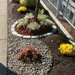 Cheap Landscaping work with bark, grass and compoused D.G.