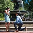 Photo #5: Professional Photographer for Proposal, Engagement, Wedding