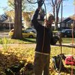Professional Tree Service Boise