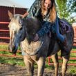 Horseback Riding Lessons and Equine Services