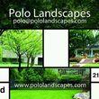 Polo landcaspes