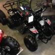 VTP MOTORSPORTS - dirtbikes, ATV's, Go-karts, Go-Peds