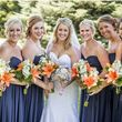 David Brooke WEDDING PHOTOGRAPHY - 8 HOURS $599
