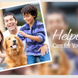 Country Creek Animal Hospital. Dog sitting & Grooming services