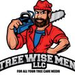Tree Wise Men - Removal, Stump grinding, etc