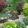 Aquatica. Pond and Water Garden Service