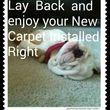 Carpet Installer Installation/Plugs