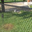 Photo #4: Coles Fence installation and repair