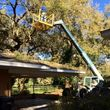 BOBCAT SERVICES! LAND CLEARING, BRUSH REMOVAL!