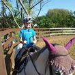 Horseback Riding Lessons/ Horse Training
