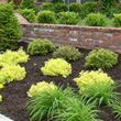 LANDSCAPING & MORE - PROFESSIONAL WORK, 'DIRT CHEAP' !!!