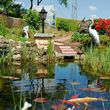 Unique Yardscapes Koi Ponds and Stonework