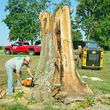 HODGES TREE TRIMMING (WE SPECIALIZE IN DANGEROUS TREE REMOVAL)