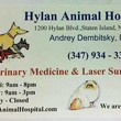 Laser Surgery For Cats & Dogs...