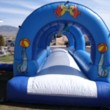 Photo #18: BOUNCE HOUSE [option 1 ] rentals as low as $79.99